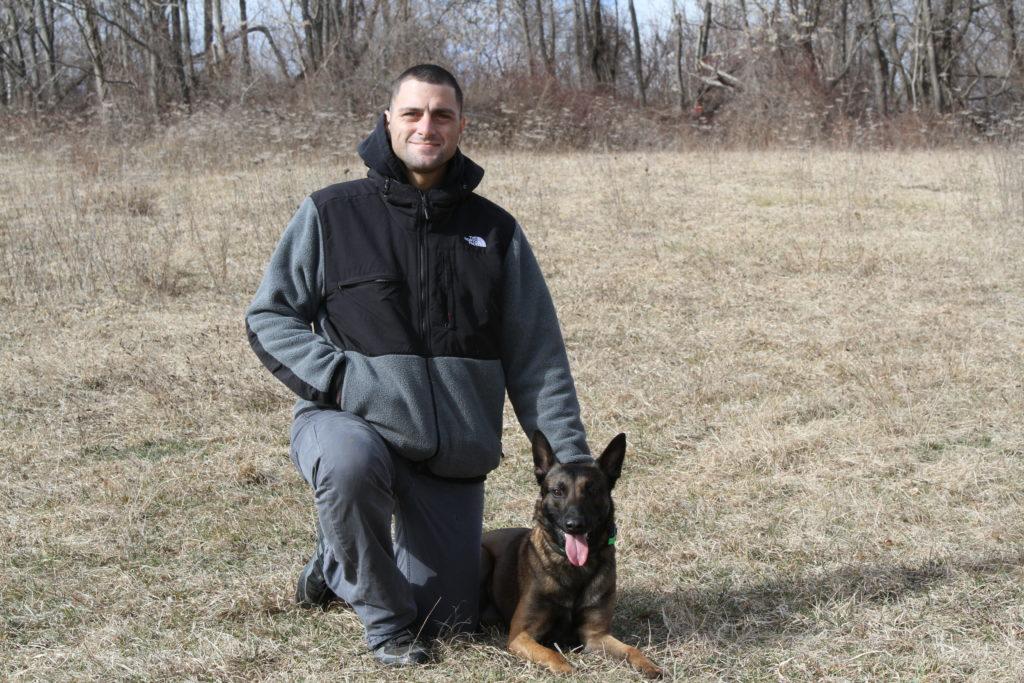 Puppy Trainer Wilton Ct Vincent Demaio Dog Trainer